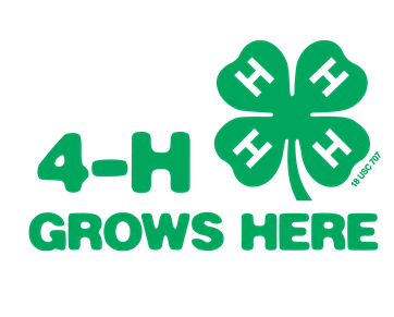4h - 4-H Members Give Life Skills Presentations