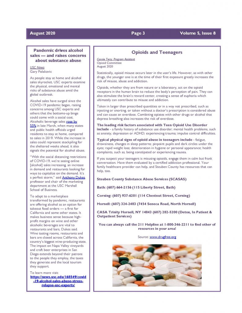 August 2020 Newsletter Page 3 791x1024 - Steuben Prevention Coalition - Ounce of Prevention (August)