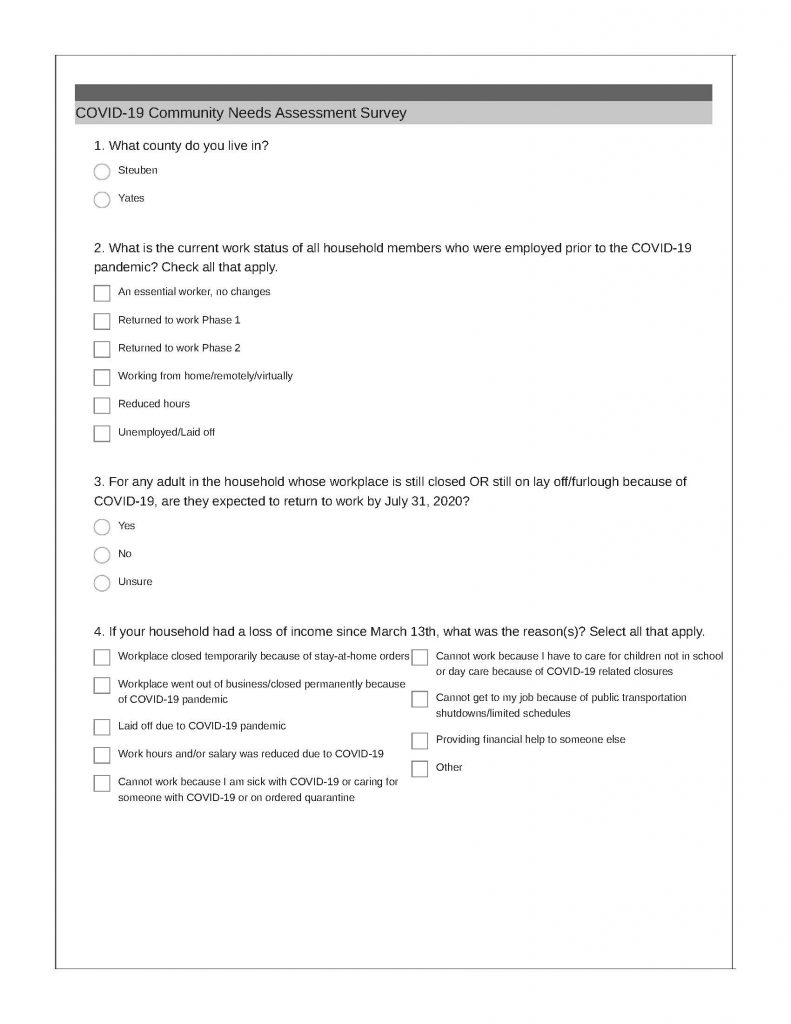COVID 19 Community Needs Assessment Page 1 791x1024 - ProAction Community Needs Assessment