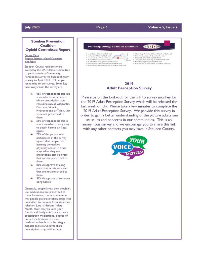 July 2020 Newsletter Page 3 791x1024 - Steuben Prevention Coalition - Ounce of Prevention (July)