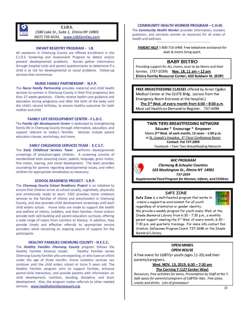 NOVEMBER newsletter  Page 3 792x1024 - CIDS November News and Services Roster
