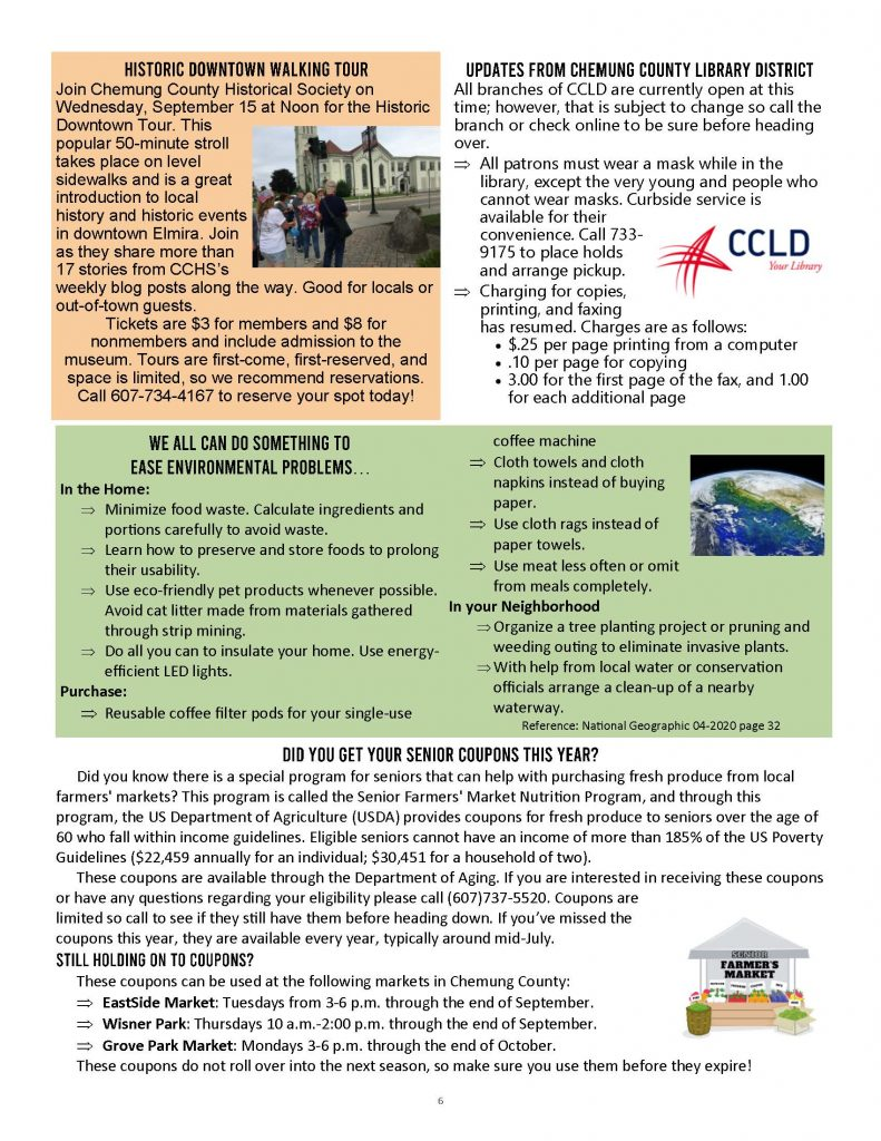 Newsletter Sept Oct 2021 Page 6 791x1024 - Thrive Newsletter - Chemung Volunteer Action Corps (Sept./Oct.)