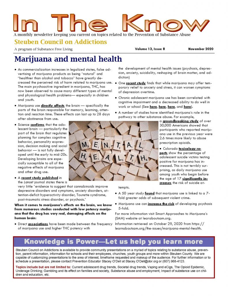November 1 Page 1 791x1024 - Steuben Council on Addictions - In the Know (November)
