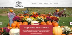 October News from CCE Steuben6 300x147 - October News from CCE-Steuben6