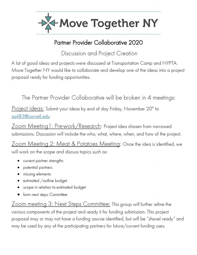 Partner Provider Meeting 2020 1 Page 1 791x1024 - Move Together NY Announces Partner Collaborative Sessions