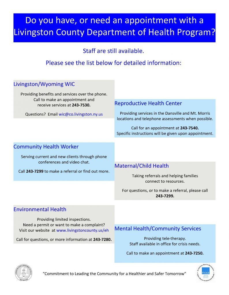 ServicesSheetDuringCOVID 794x1024 - Livingston Department of Health Program Updates