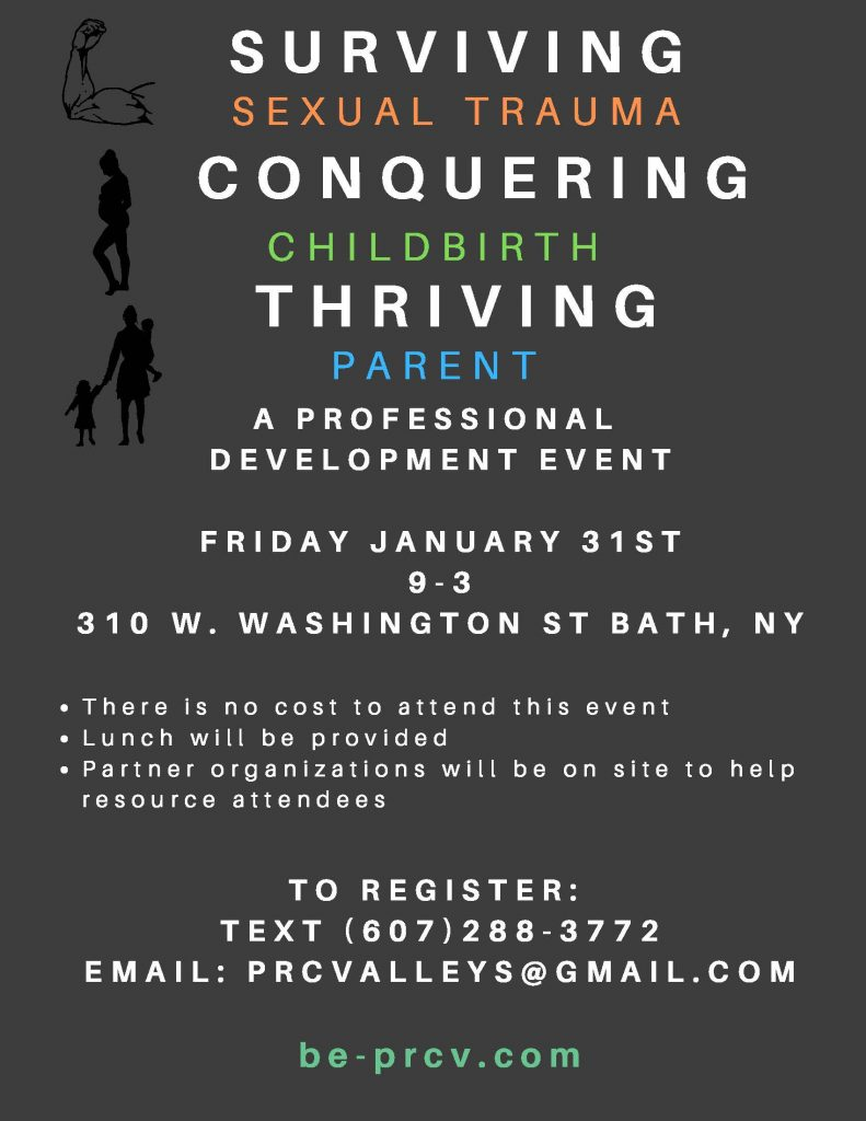 Surviving1 791x1024 - Surviving Sexual Trauma, Conquering Chidbirth, Thriving Parent: A Professional Development Event
