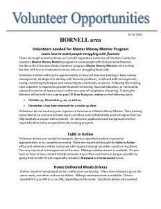 Volunteer Needs Hornell area 1 Page 1 232x300 - Volunteer Needs- Hornell area (1)_Page_1