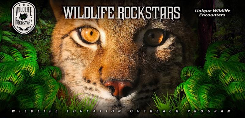 file 5  1  - Be a Wildlife Rockstar With a Donation